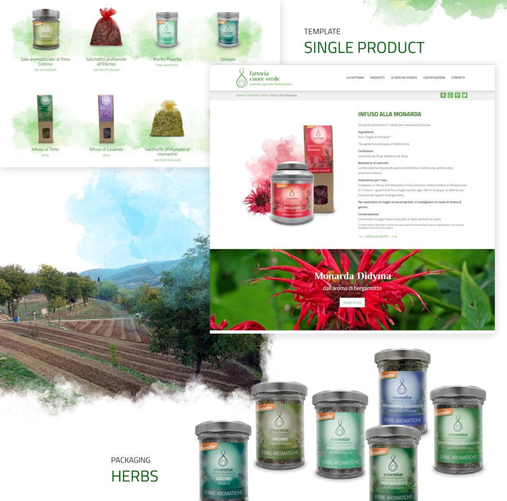 fattoria cuore verde 03
